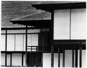 Katsura (1981-82)  ©Kochi Prefecture, Ishimoto Yasuhiro Photo Center