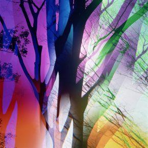 《色とかたち》1980年代 ©高知県,石元泰博フォトセンター